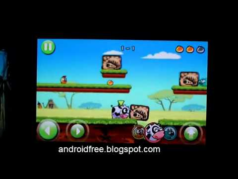 Angry Piggy New Android Gameplay Preview
